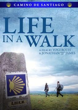 Life in a Walk - A Father and Son's Journey Through Camino de Santiago