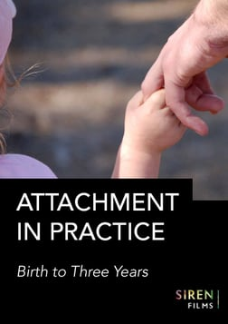 Attachment in Practice