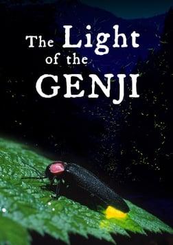 Light of the Genji - Fireflies and Artificial Light