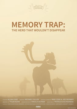 Memory Trap: The Herd That Wouldn't Disappear