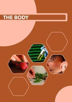 The Body - For Kindergarten - 3rd Grade