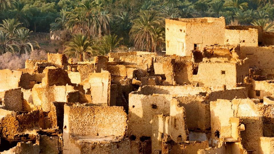 Siwa Oasis—Paradise amidst Desolation