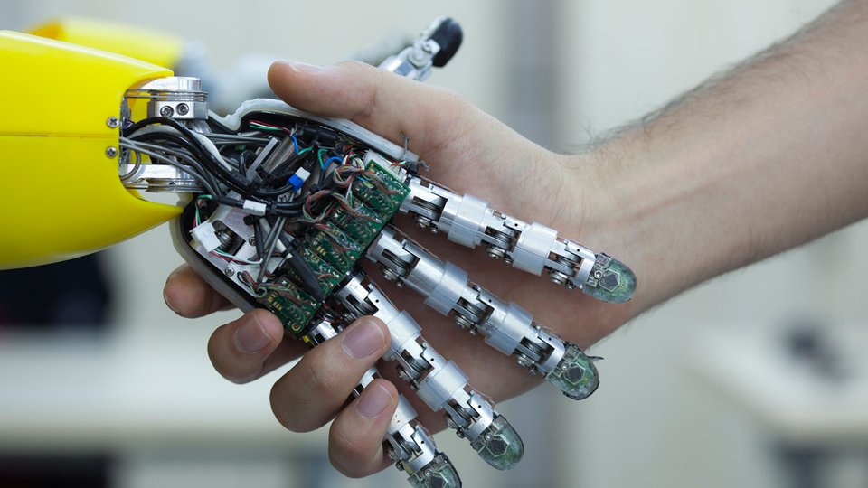 Humanoid Robots: Just like Us?