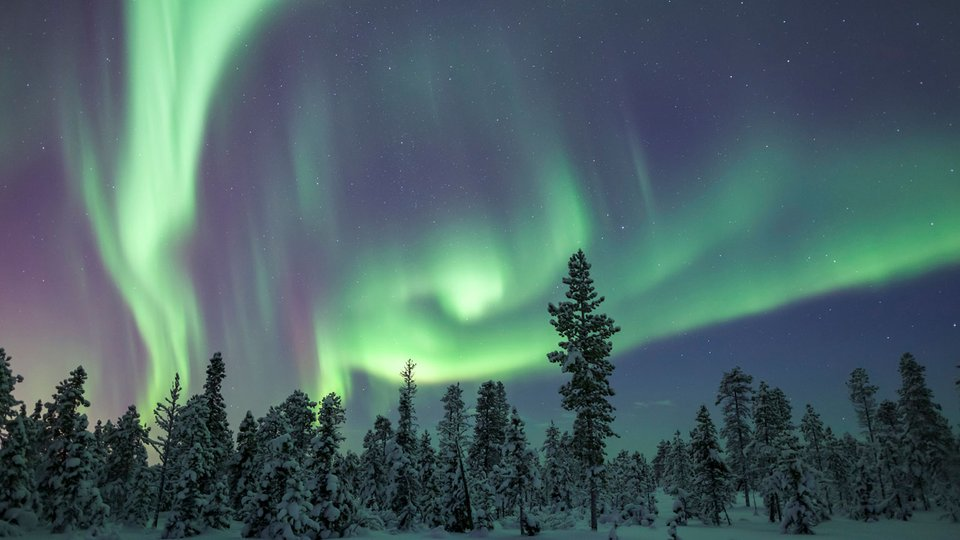 Auroras—Light Shows on the Edge of Space