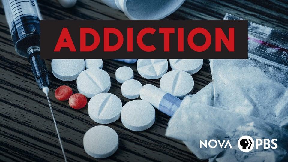 NOVA: Addiction