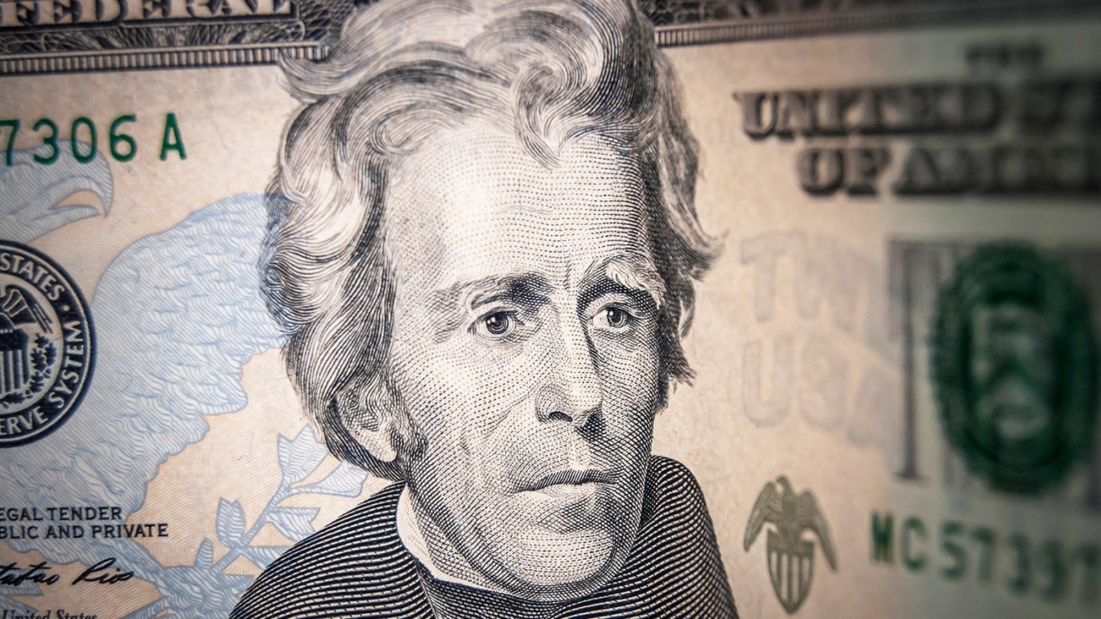 Andrew Jackson - An Odd Symbol of Democracy
