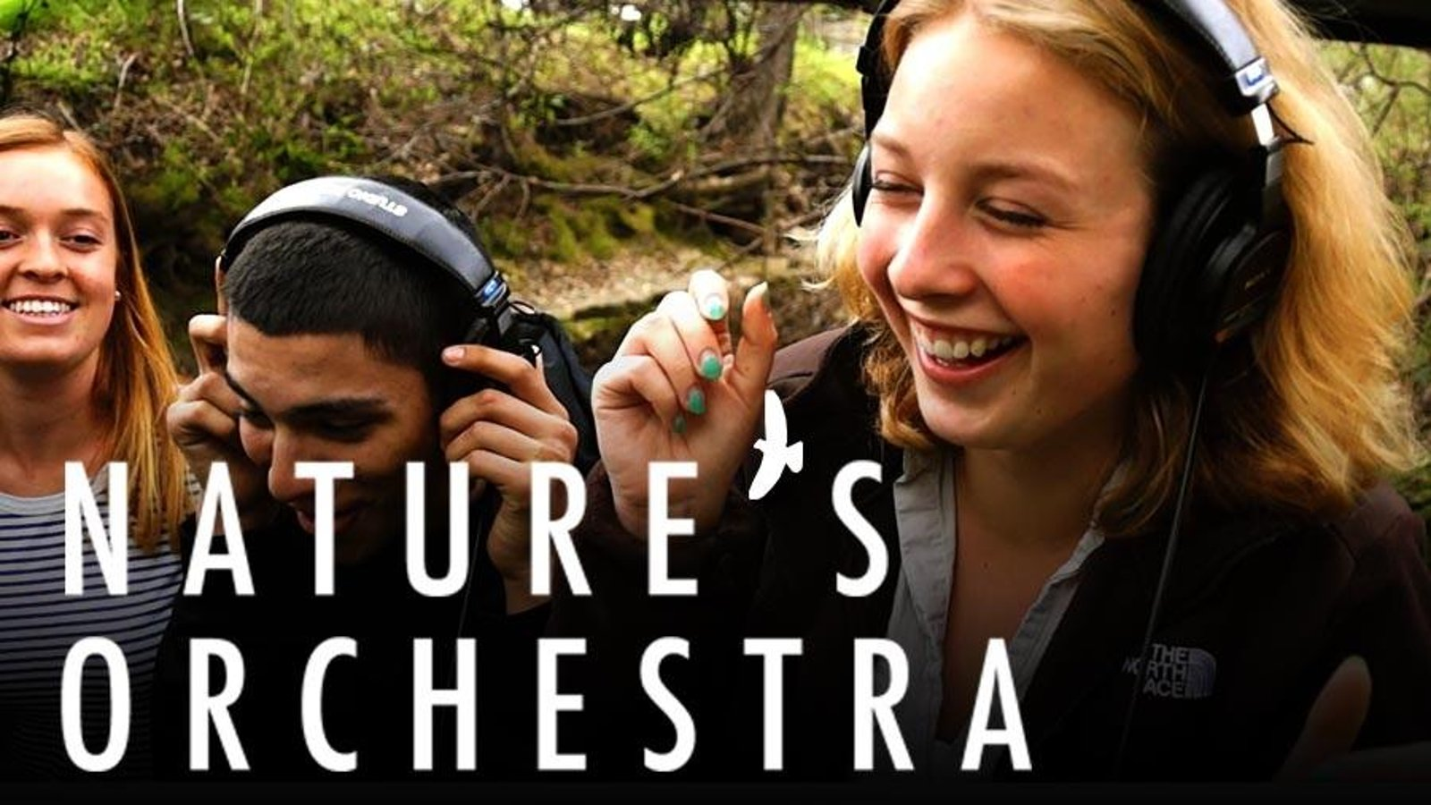 Nature's Orchestra - Sounds of Our Changing Planet