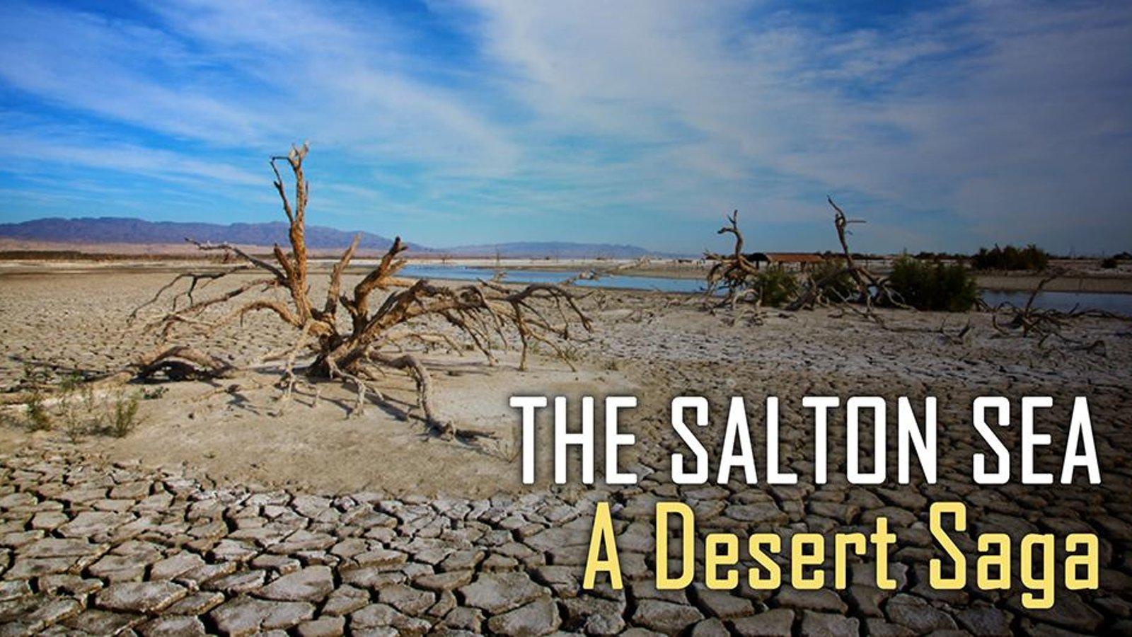 The Salton Sea - A Desert Saga