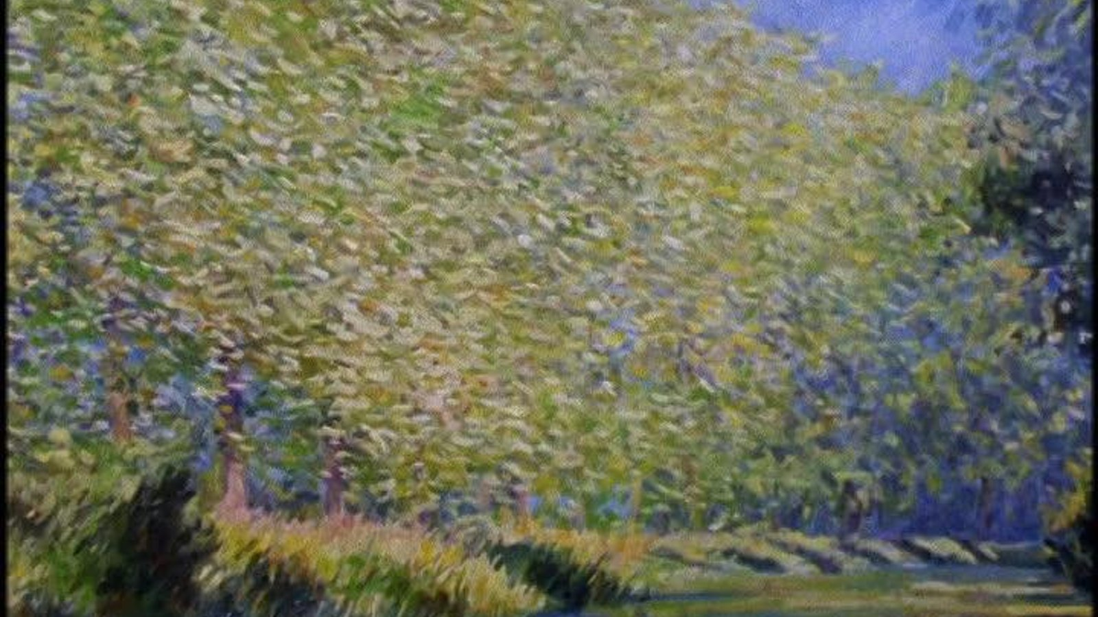 Monet: Shadow and Light