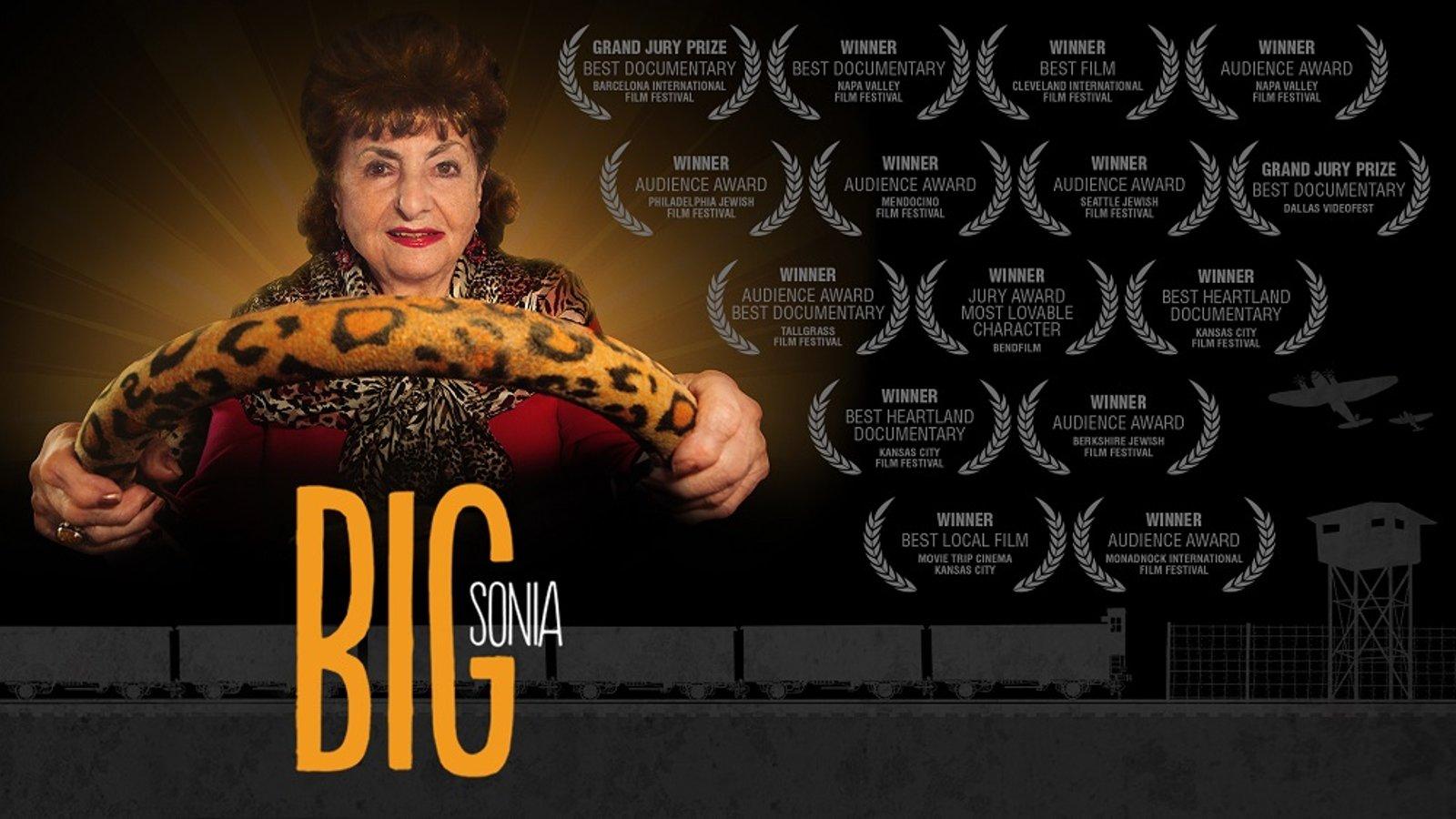 Big Sonia - A Holocaust Survivor Faces a Difficult Decision