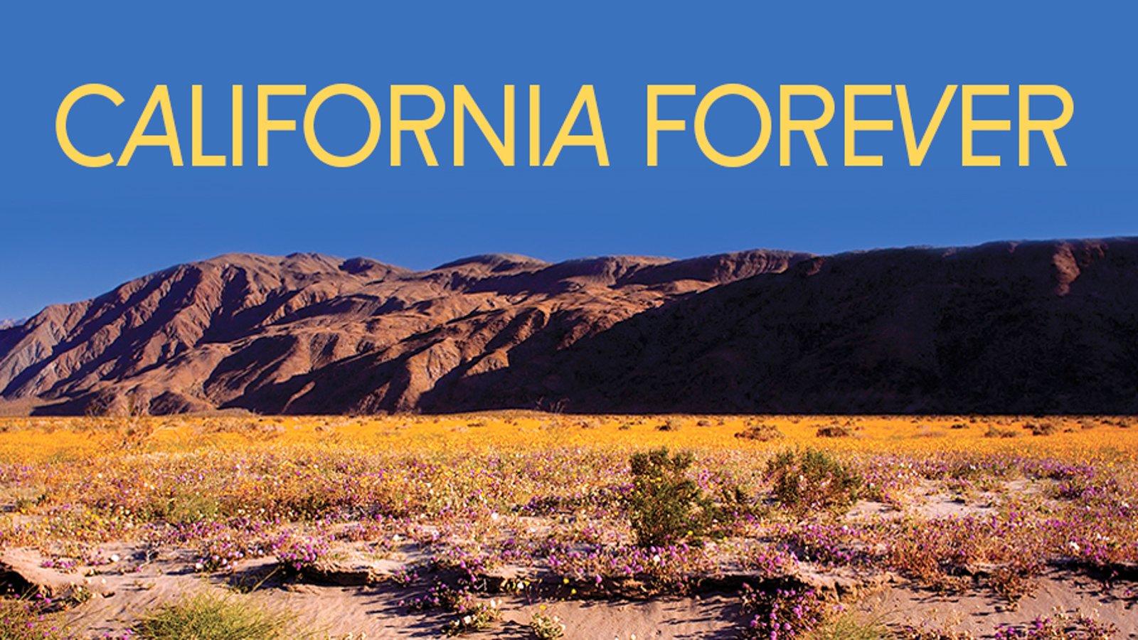 California Forever Series
