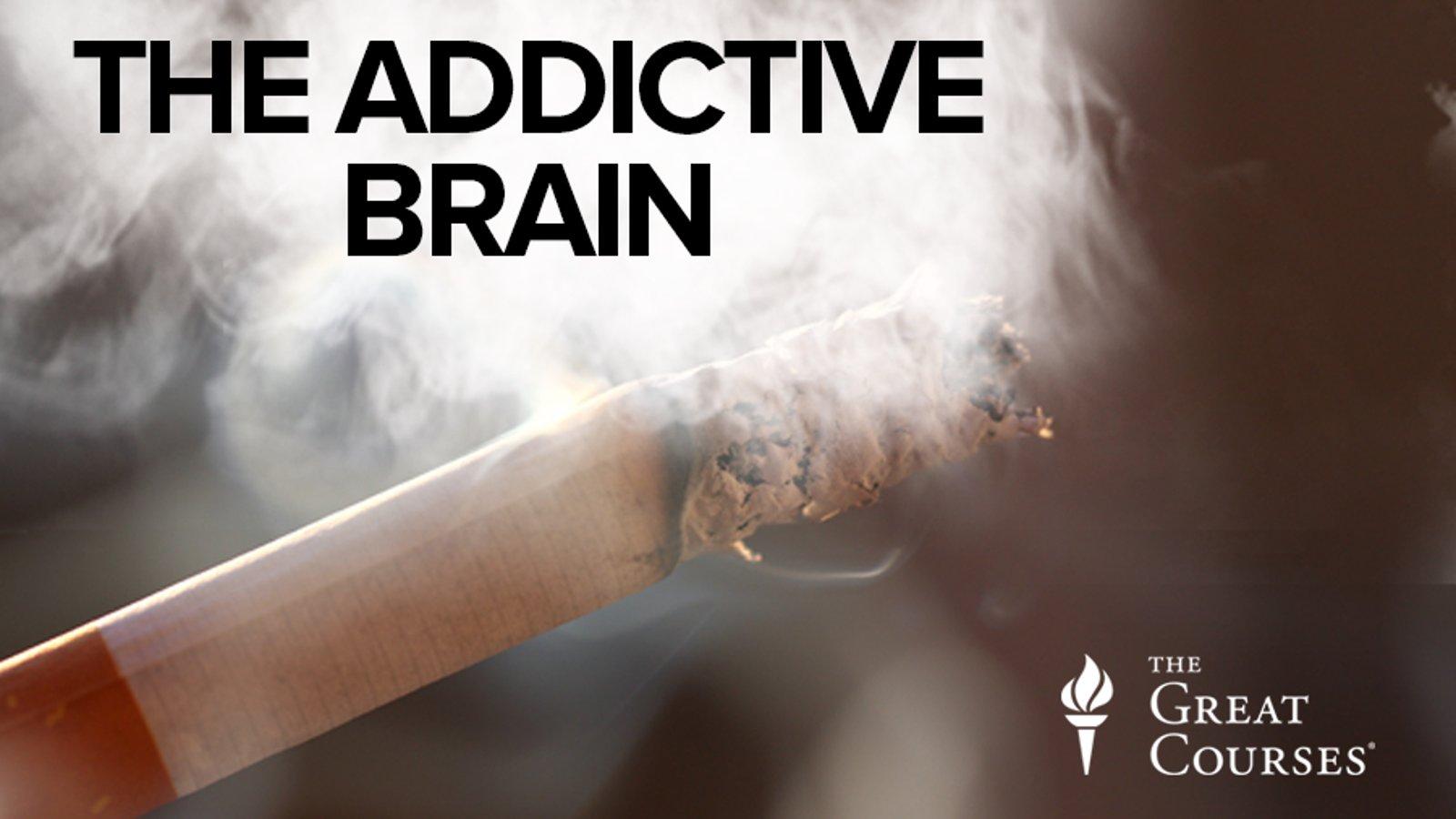 The Addictive Brain