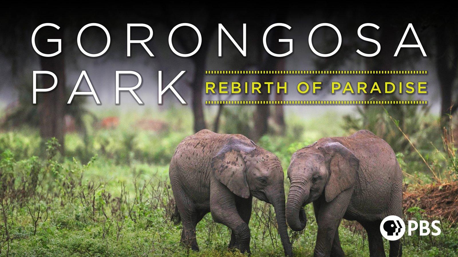 Gorongosa Park - Rebirth of Paradise