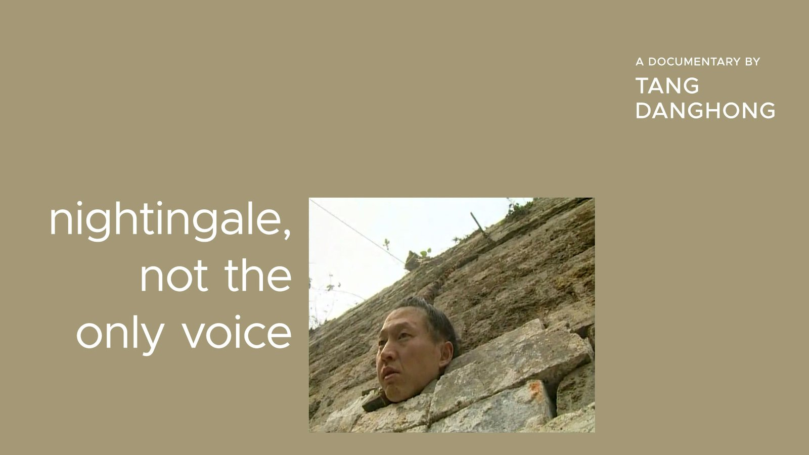 Nightingale, Not the Only Voice - Three Artists Embark on a Journey of Self-Discovery