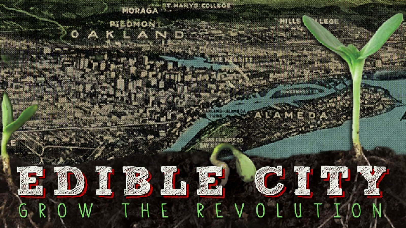 Edible City - Local Food Systems