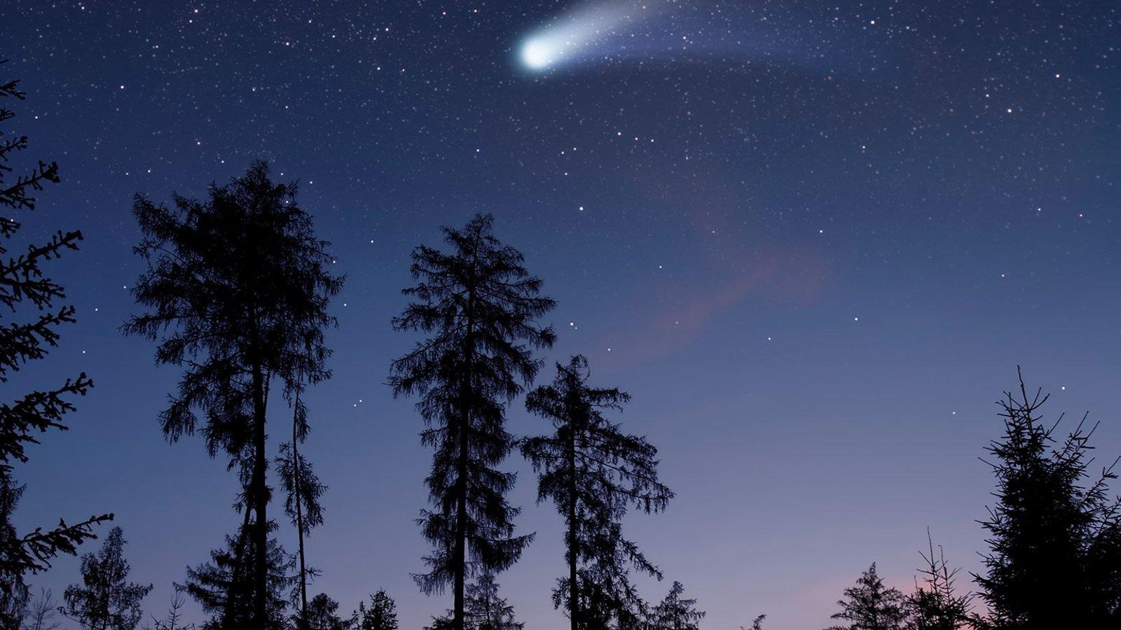 Stars in Their Courses—Orbital Mechanics
