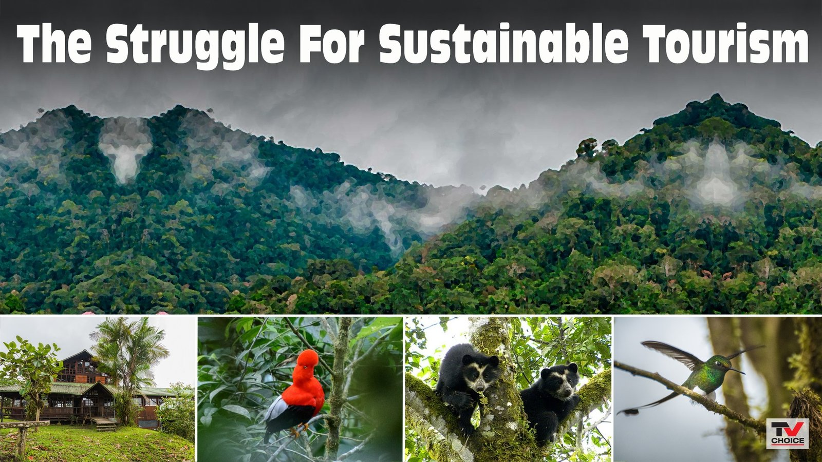 Sustainable Tourism Collection