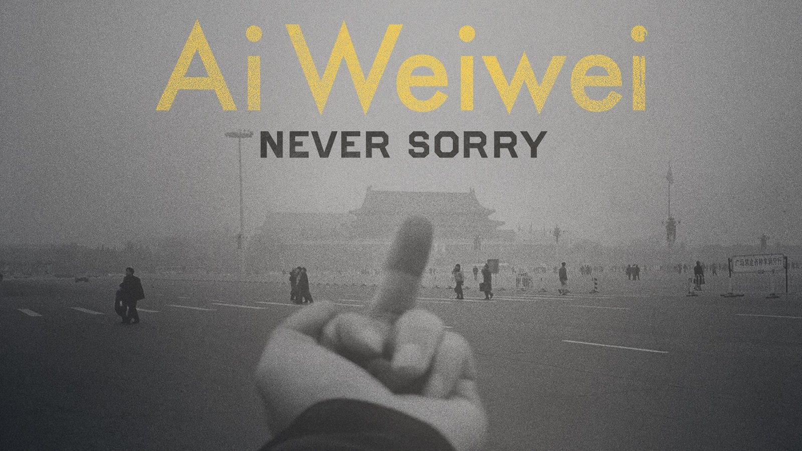 Ai Weiwei: Never Sorry - The Work of Artist and Activist, Ai Weiwei