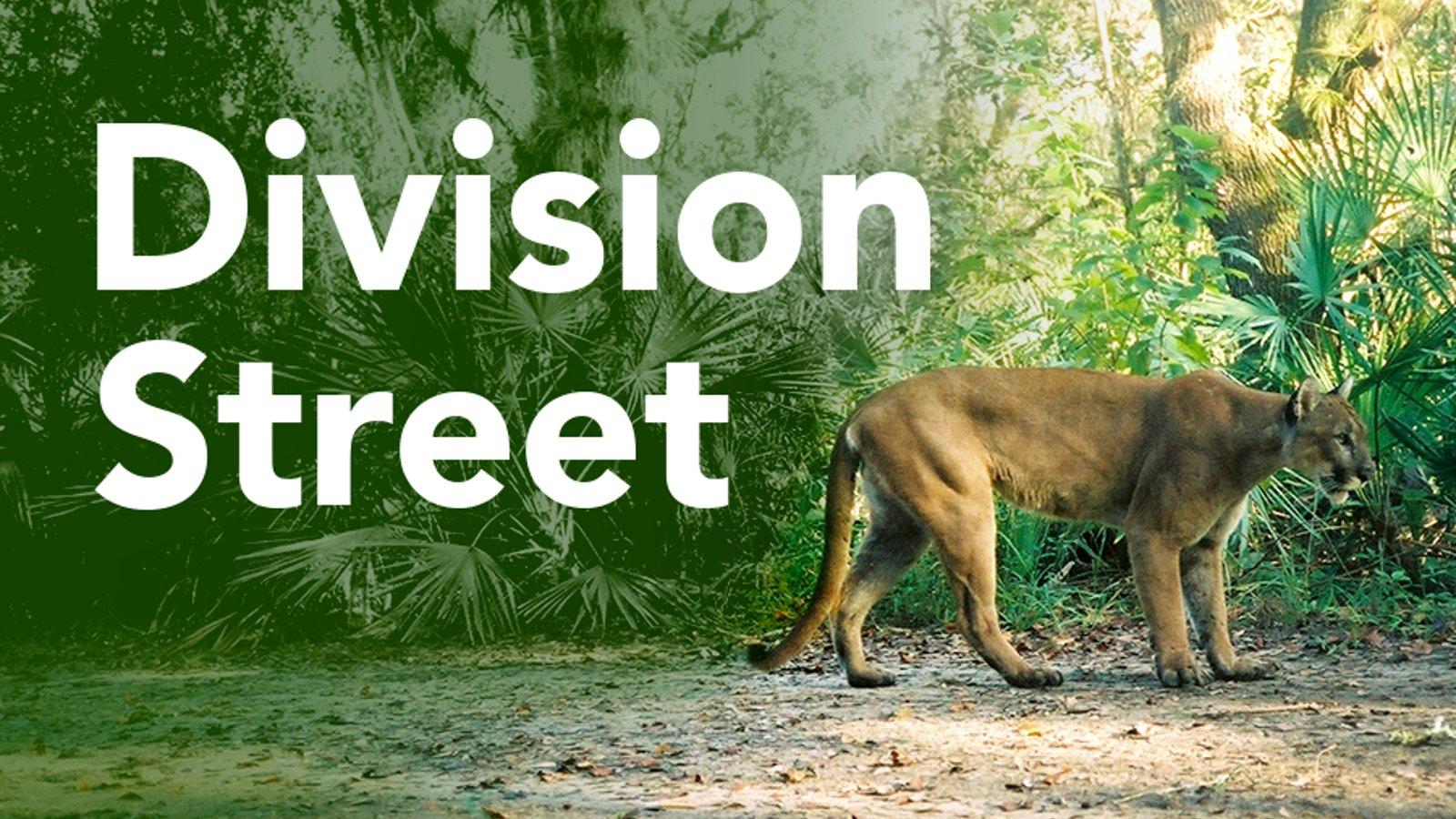 Division Street