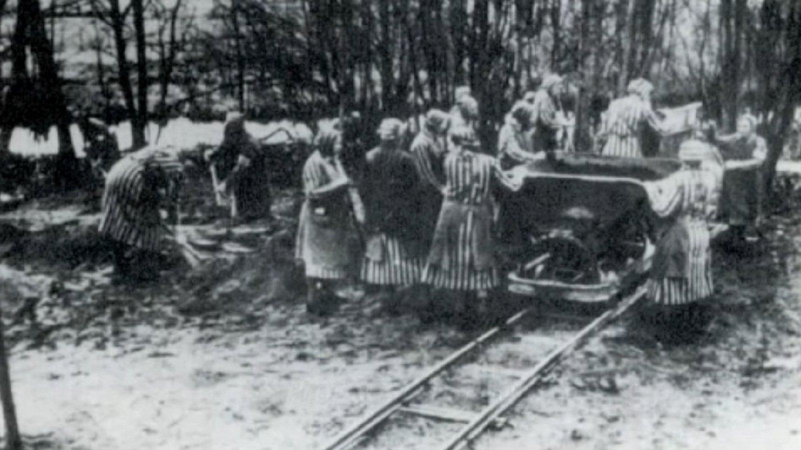 Where Birds Never Sang - The Ravensbrueck Concentration Camp