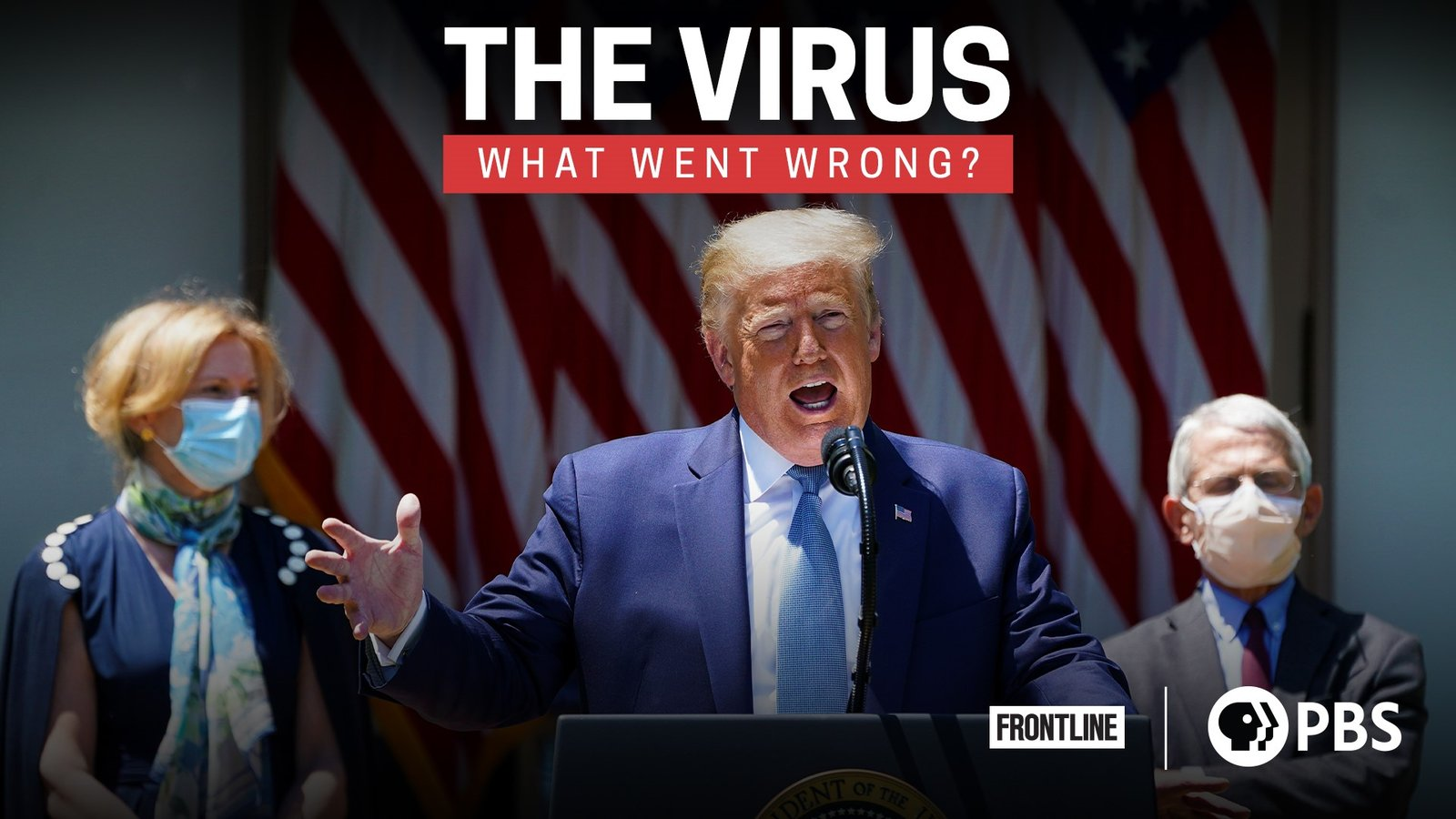 The Virus: What Went Wrong?