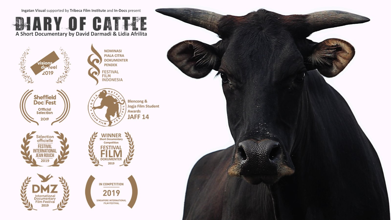 Diary of Cattle