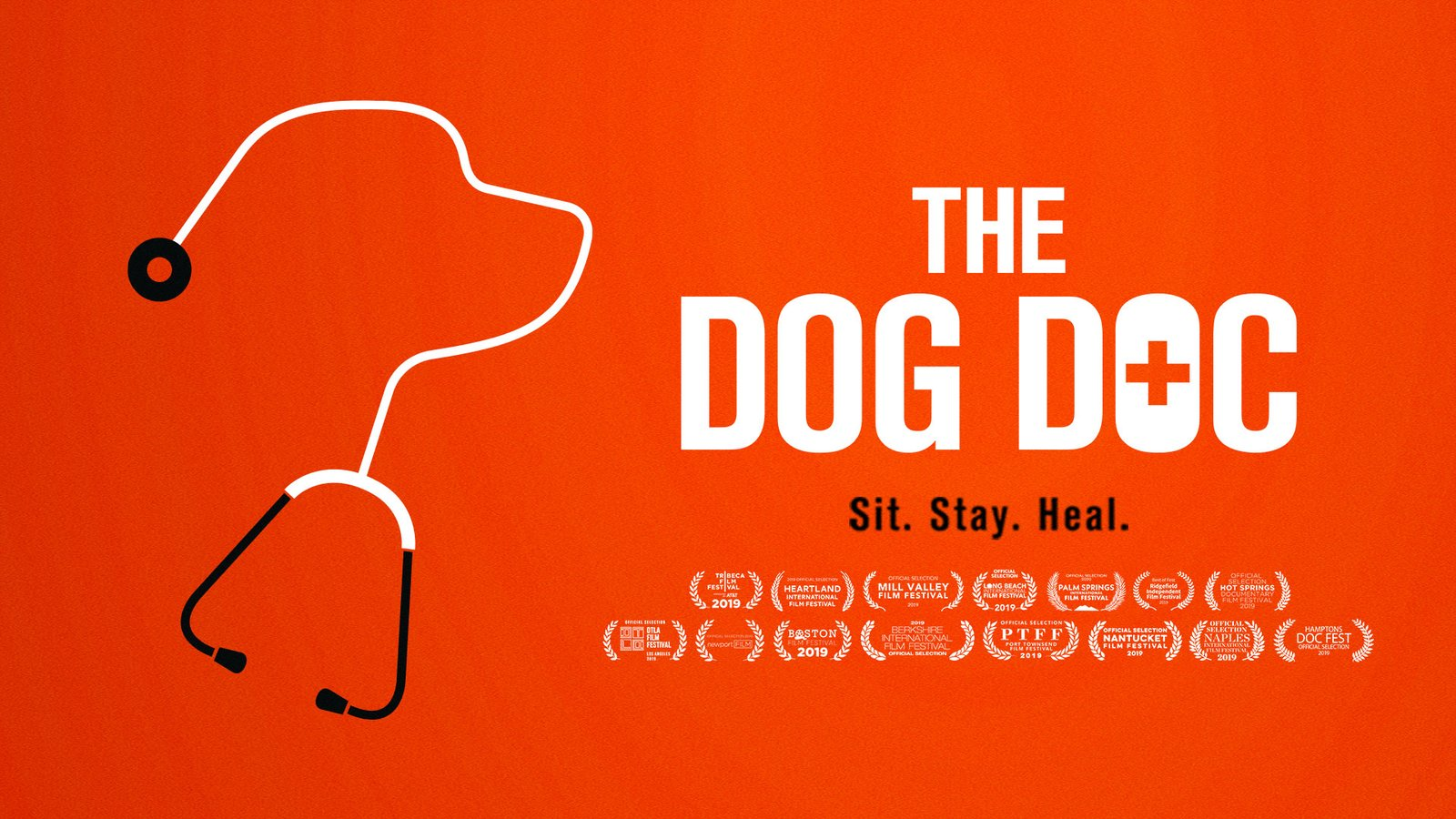 The Dog Doc
