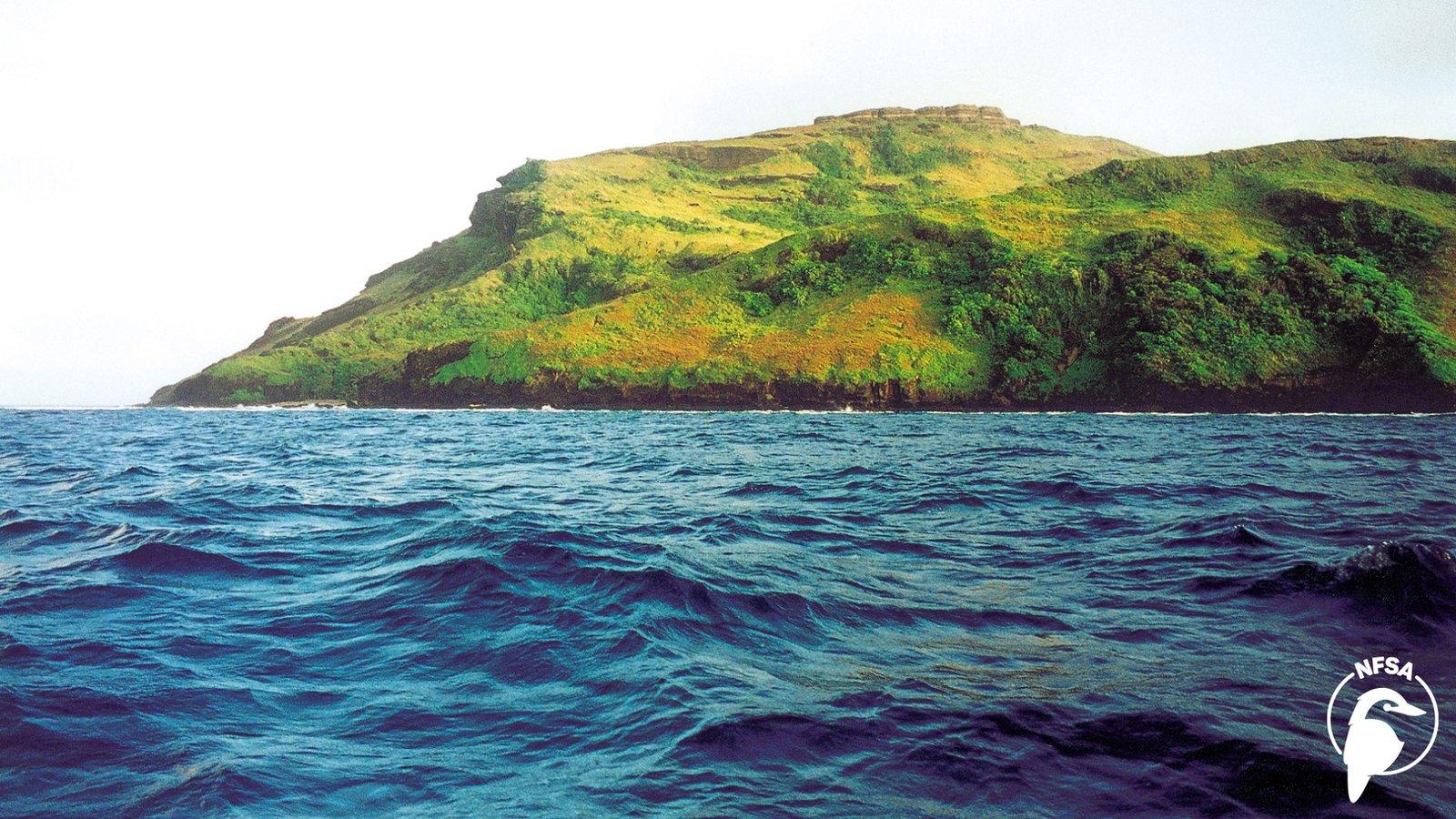 Small Island, Big Fight