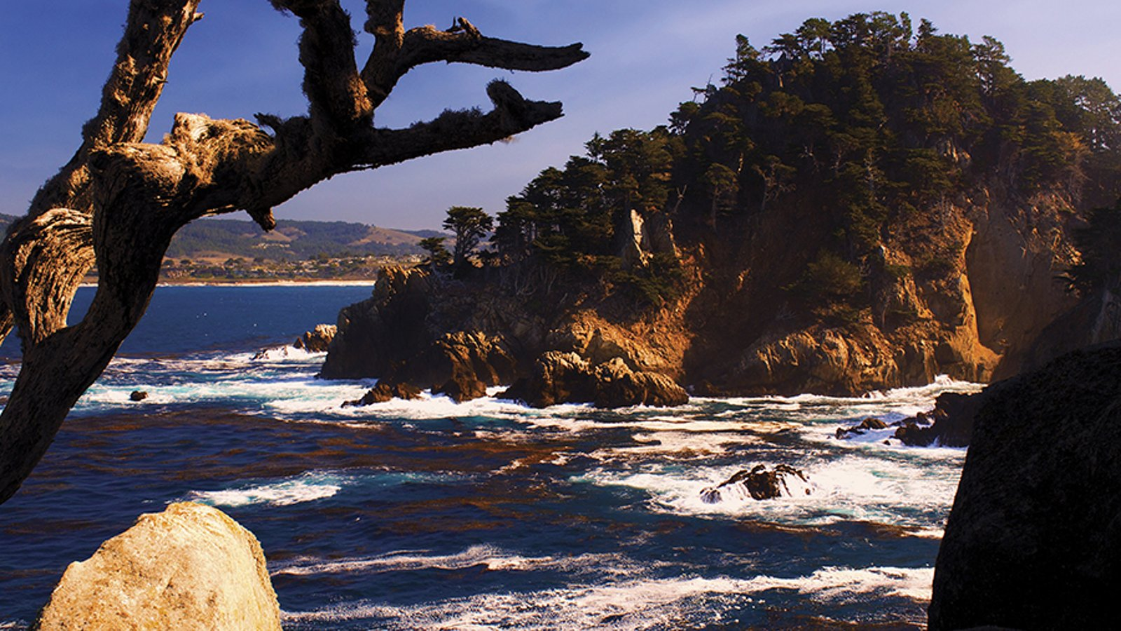 California Forever - Episode 2