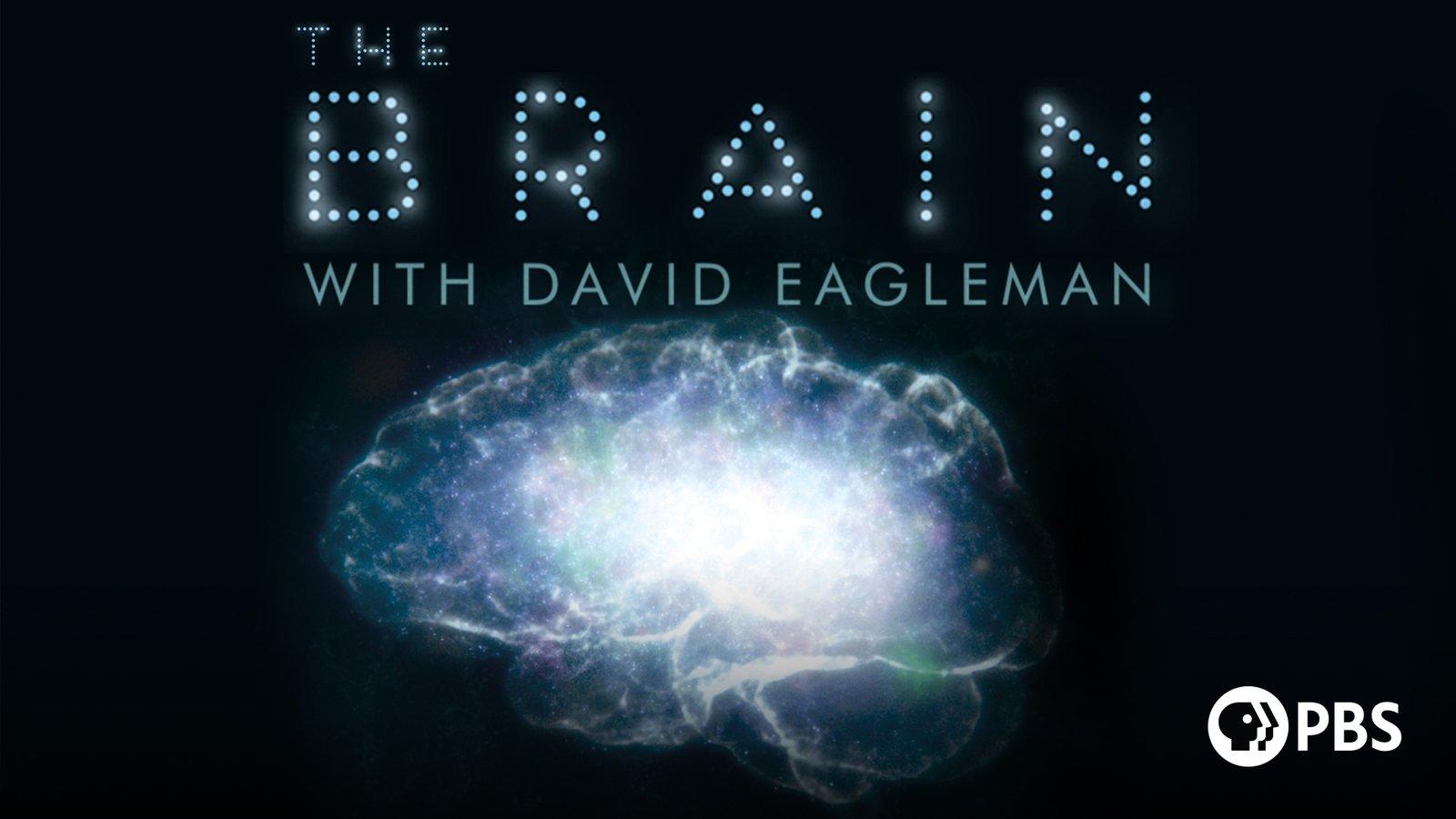 The Brain - with David Eagleman