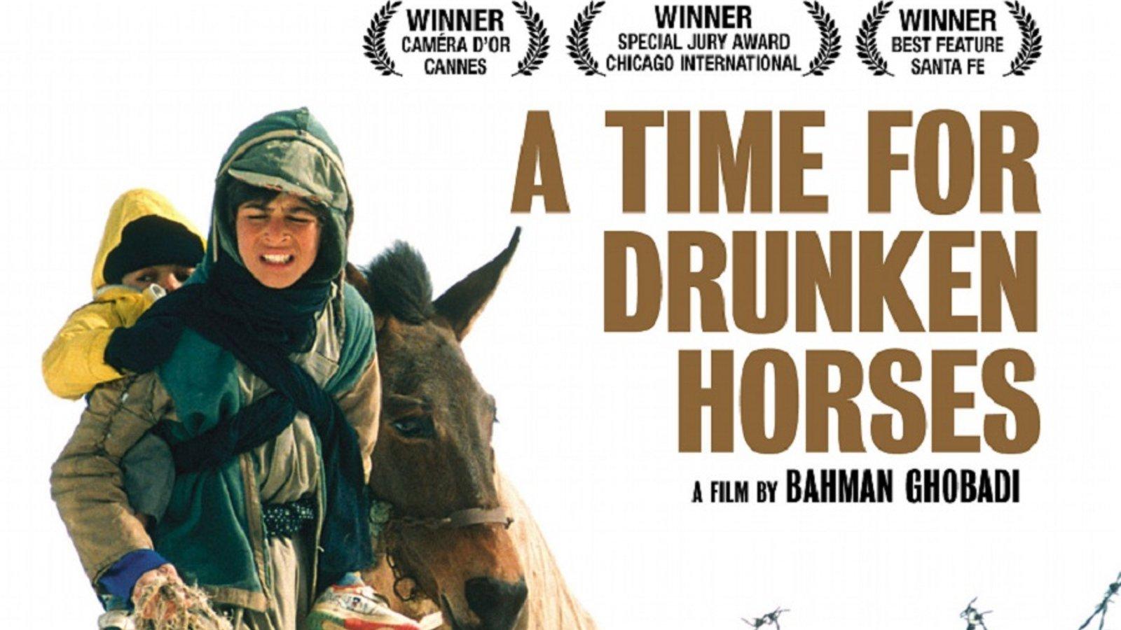 Time For Drunken Horses