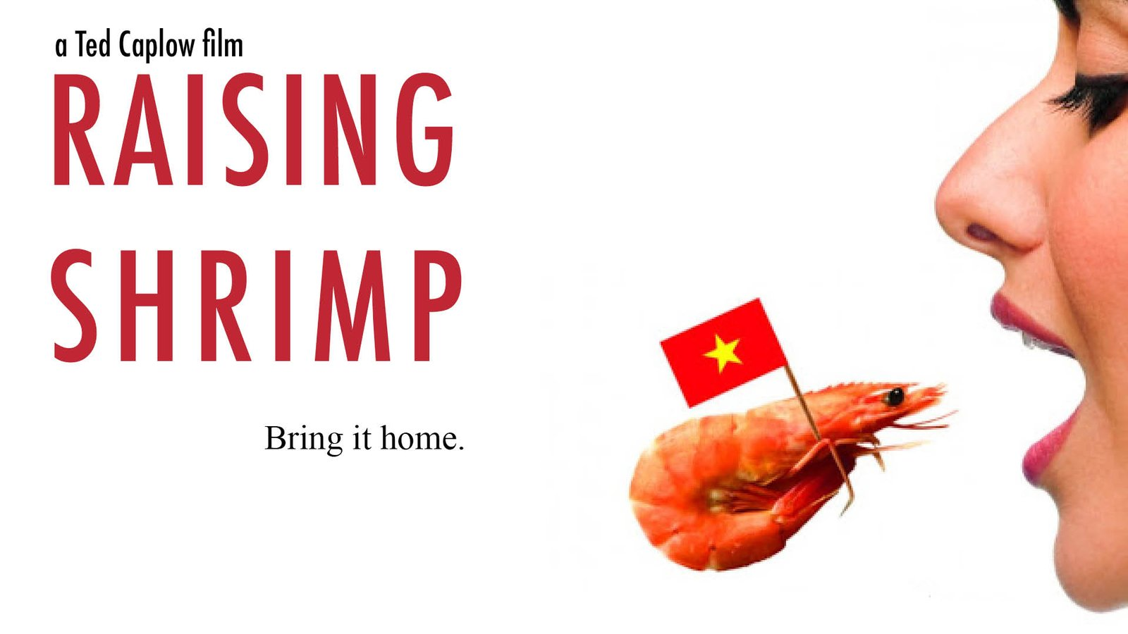 Raising Shrimp - The Future of America's Favorite Seafood
