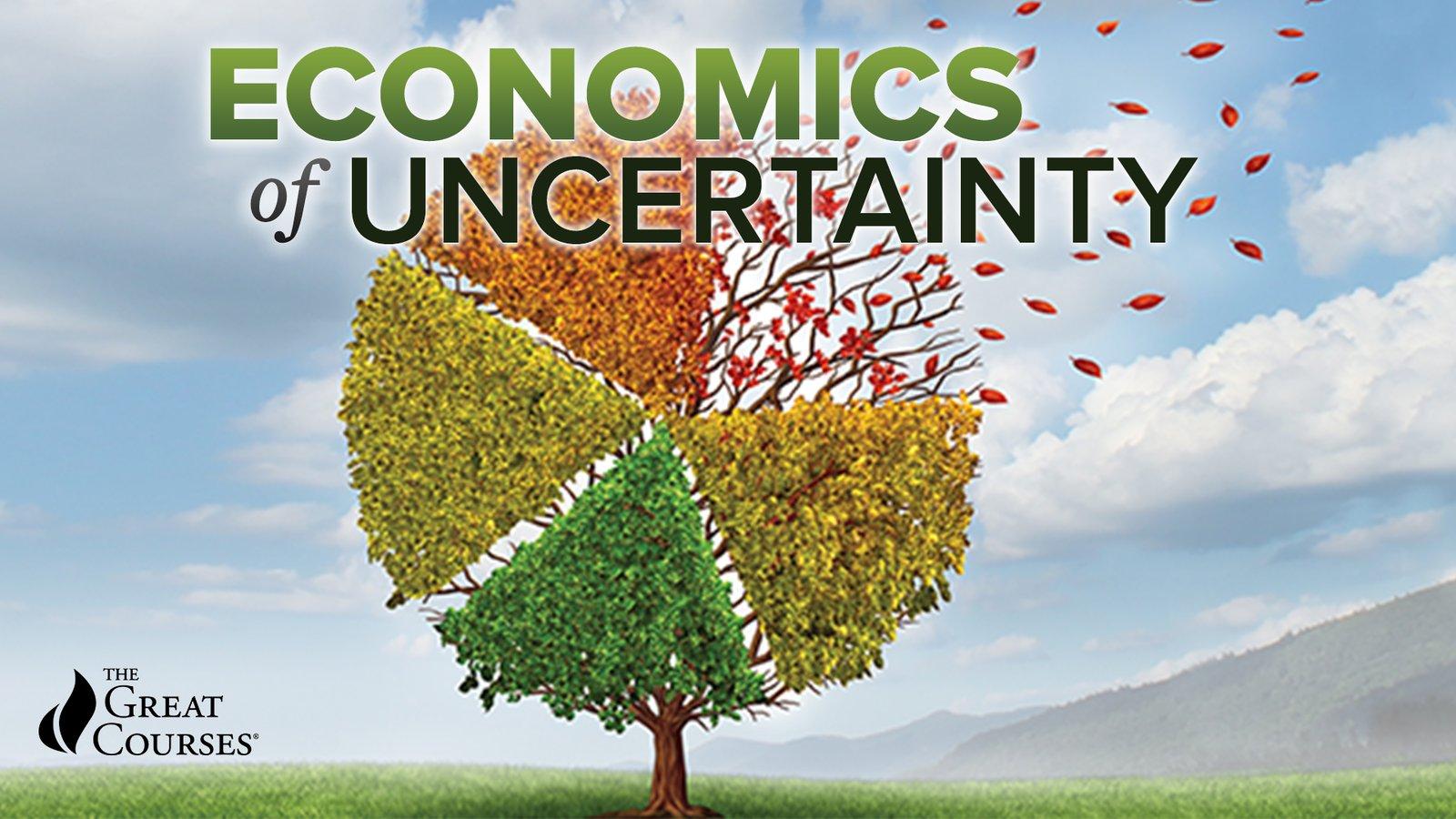 The Economics of Uncertainty