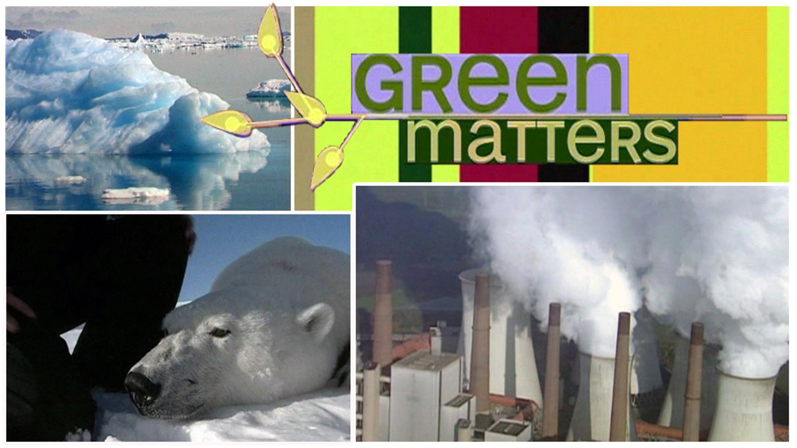 Green Matters- What in the World is Going on?