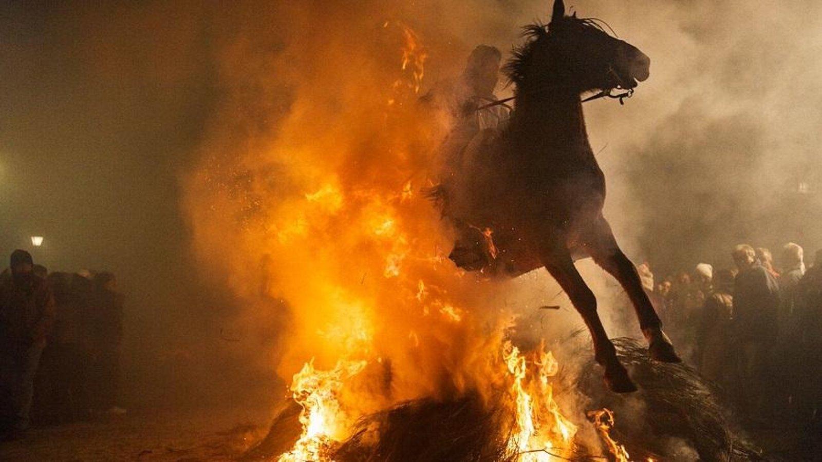 Santa Fiesta - Animal Abuse in Spanish Festivals