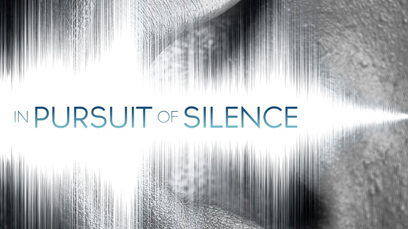 In Pursuit Of Silence - Meditating on Our Relationship to Sound and Silence