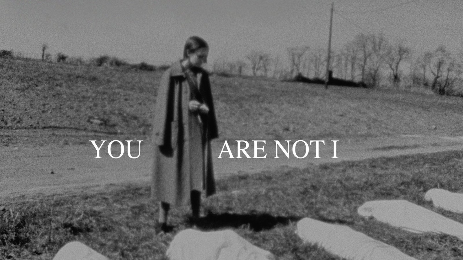 You Are Not I