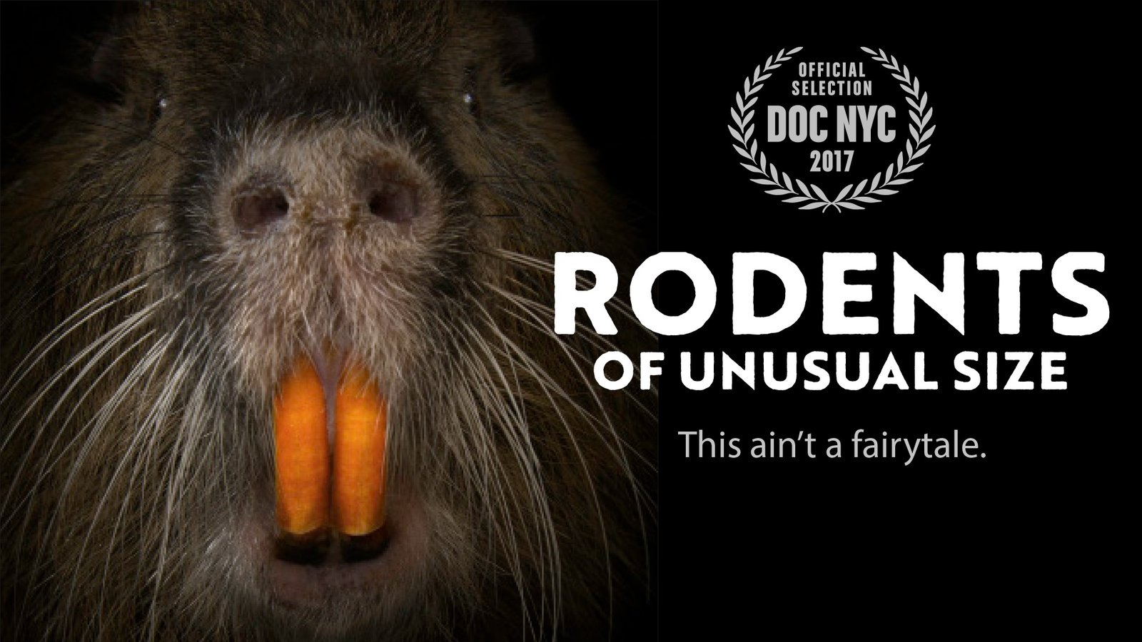 Rodents of Unusual Size - Giant Swamp Rats Invading Coastal Louisiana