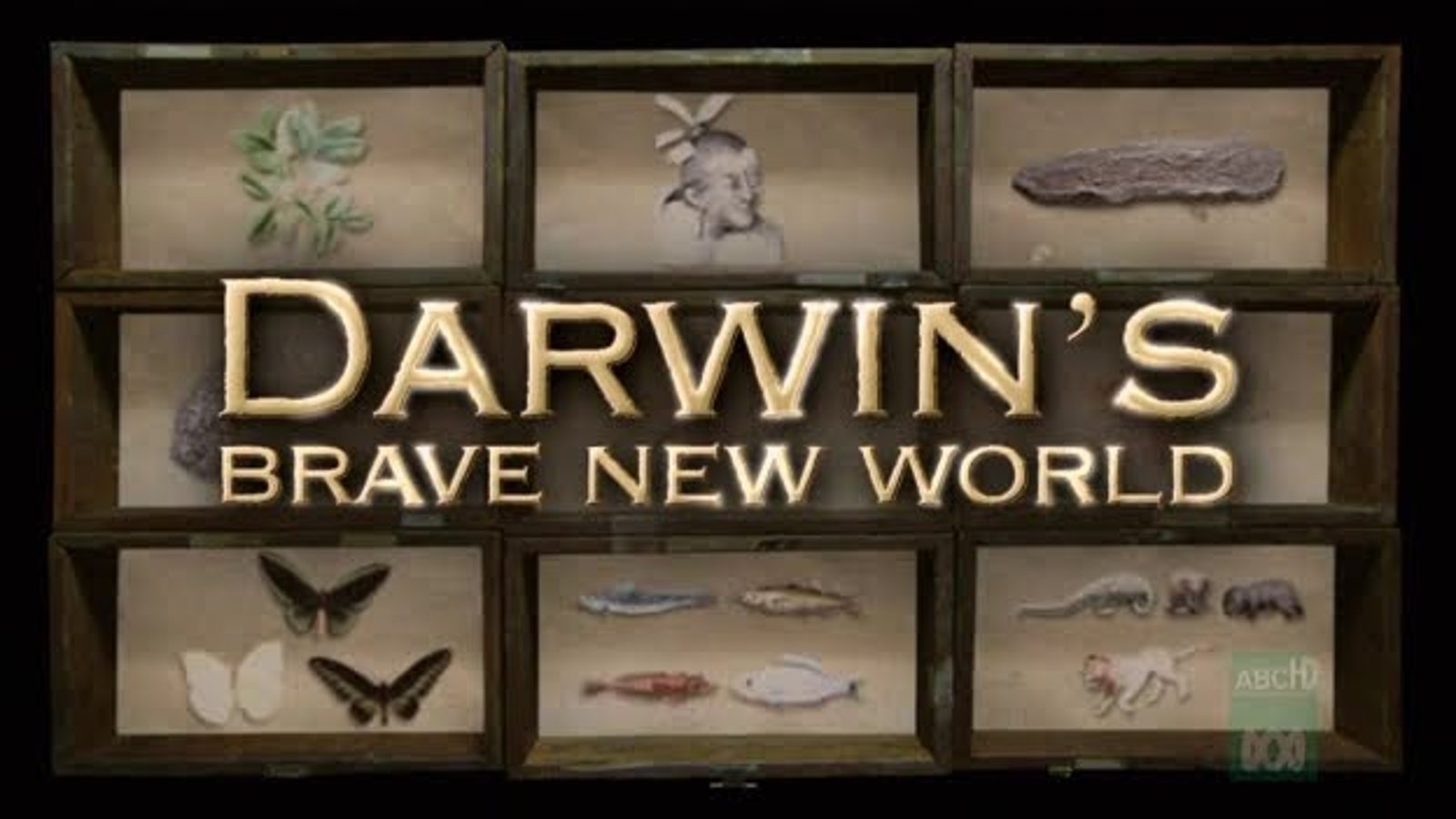 Darwin's Brave New World