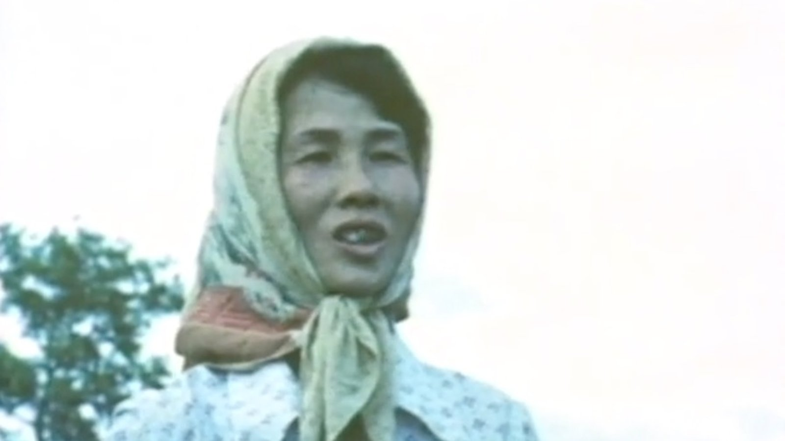 A Chinese Farm Wife