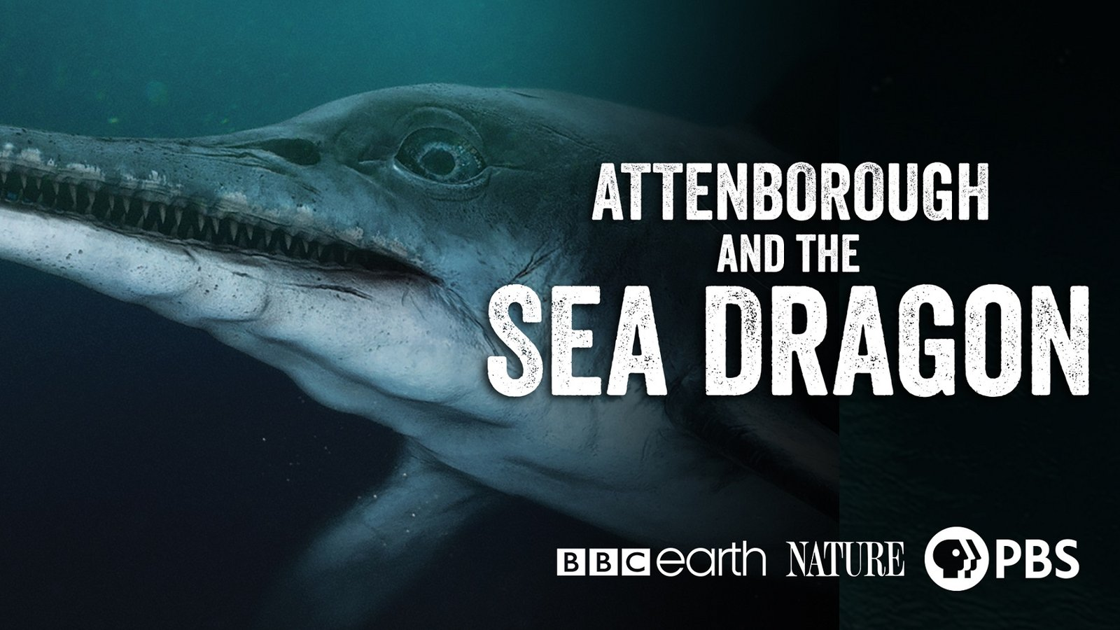 Nature: Attenborough and The Sea Dragon
