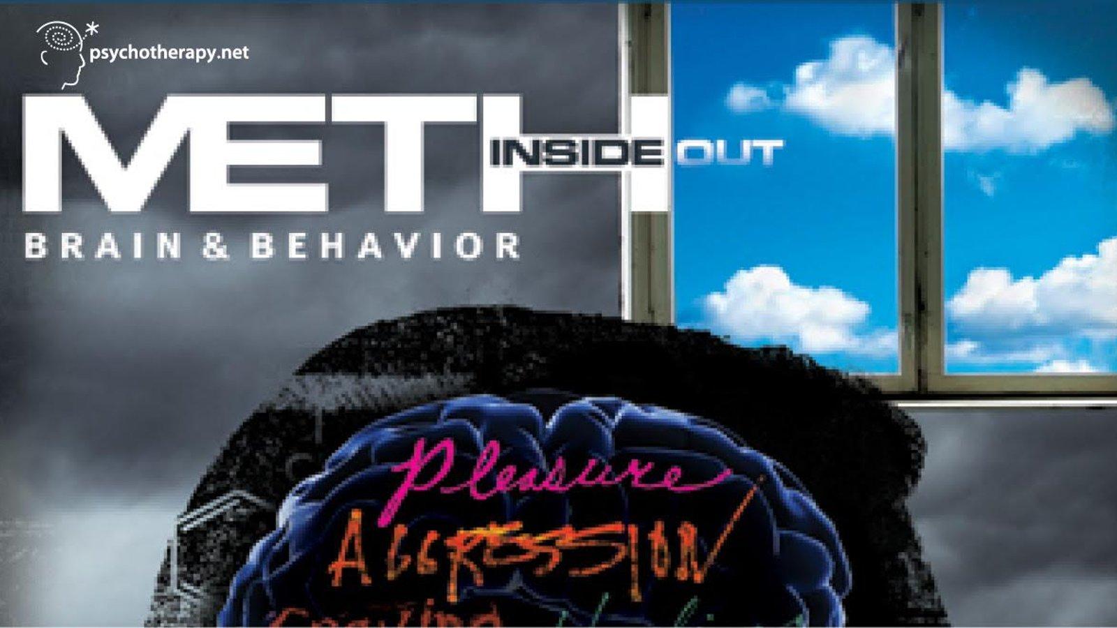 Meth Inside Out: Brain & Behavior
