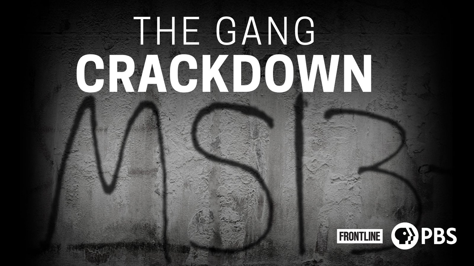 The Gang Crackdown