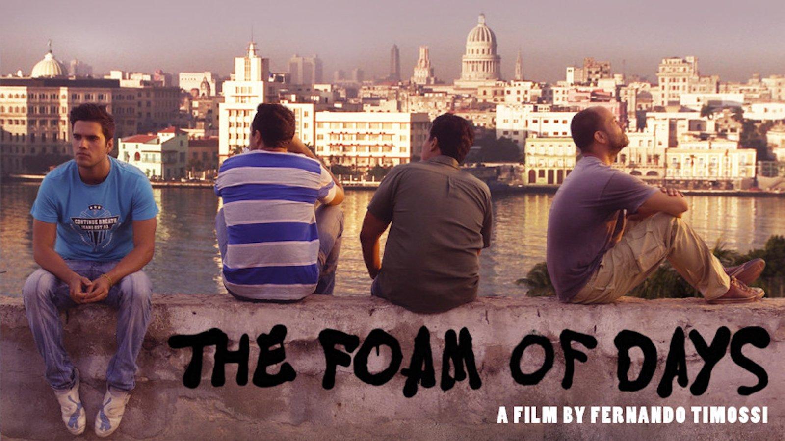 The Foam of Days - La espuma de los días