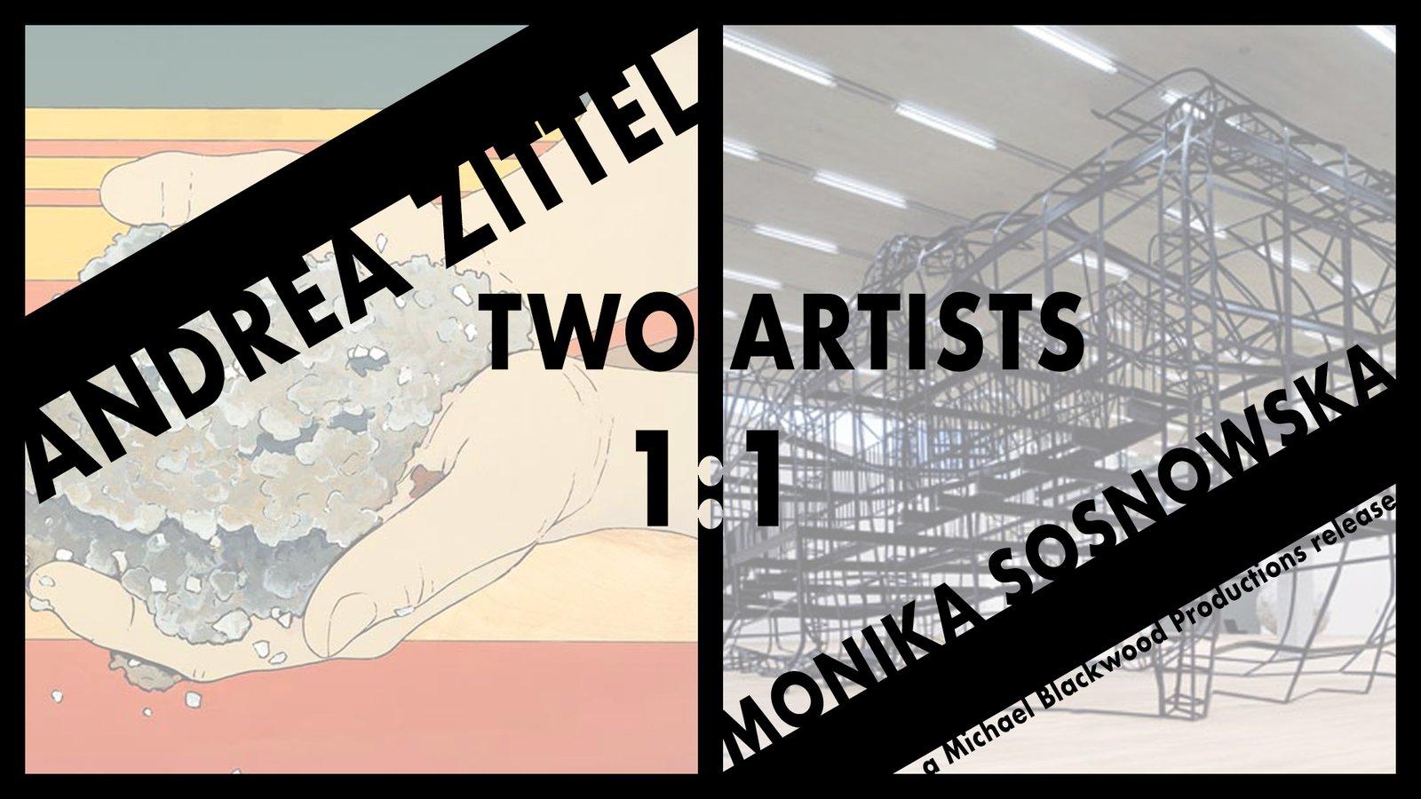 Two Artists: Andrea Zittel and Monika Sosnowska 1:1