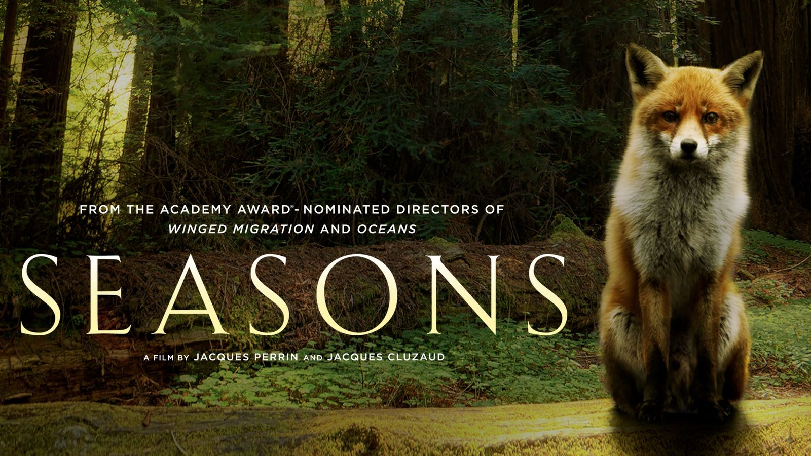 Seasons - A Journey into the Forests of Europe