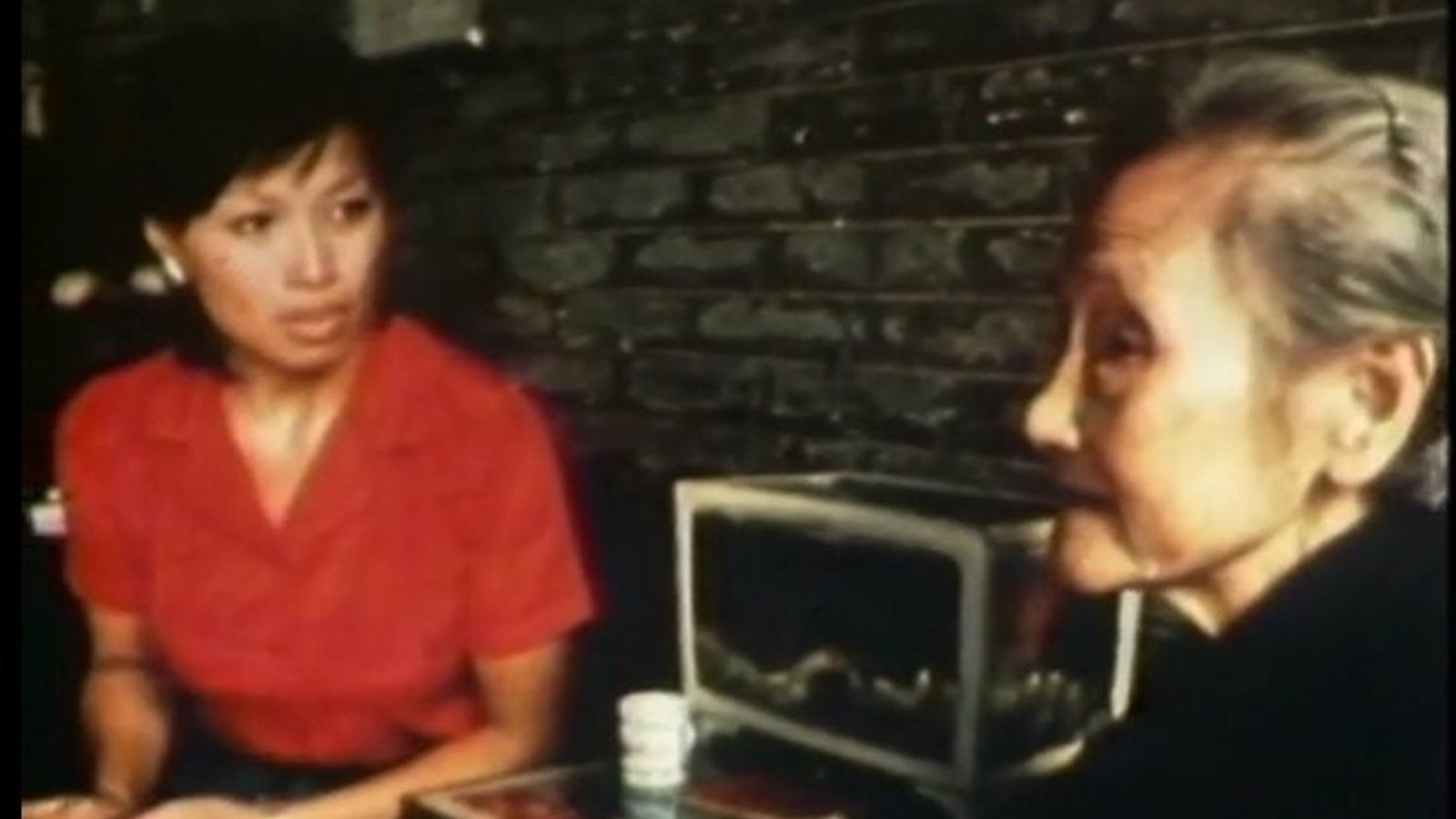 China: Land of My Father - A Search for Family Roots in China