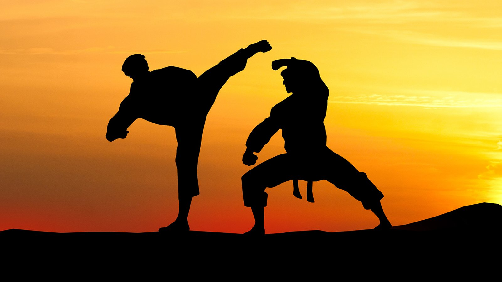Kung Fu: Stances and Moving Drills