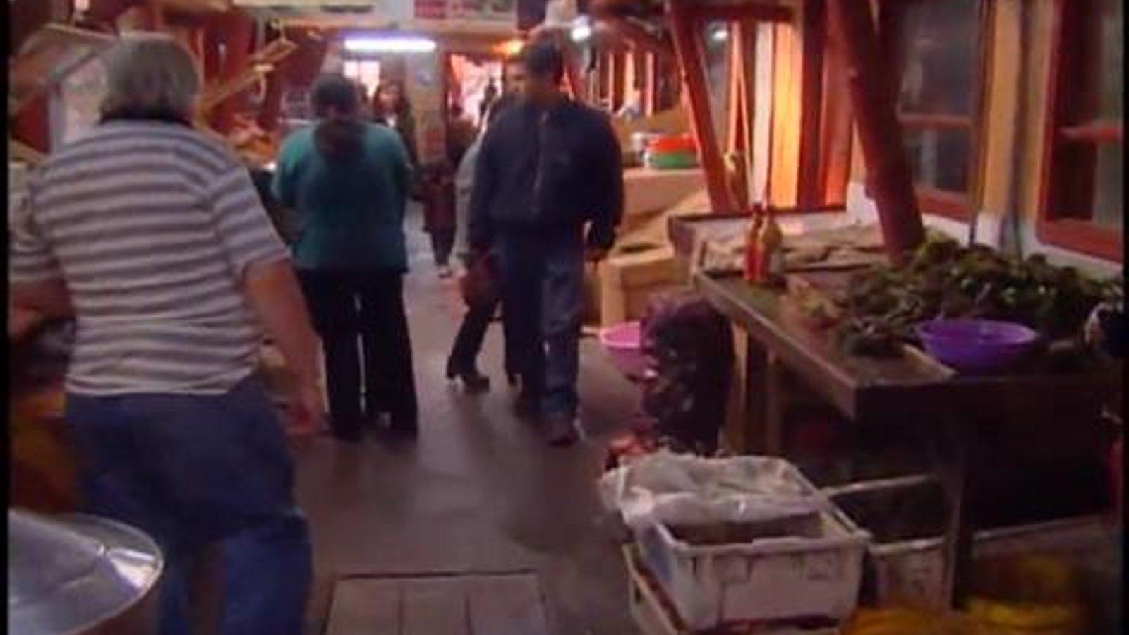 Chile 2 - Punta Arenas, Puerto Montt, and Valparaiso
