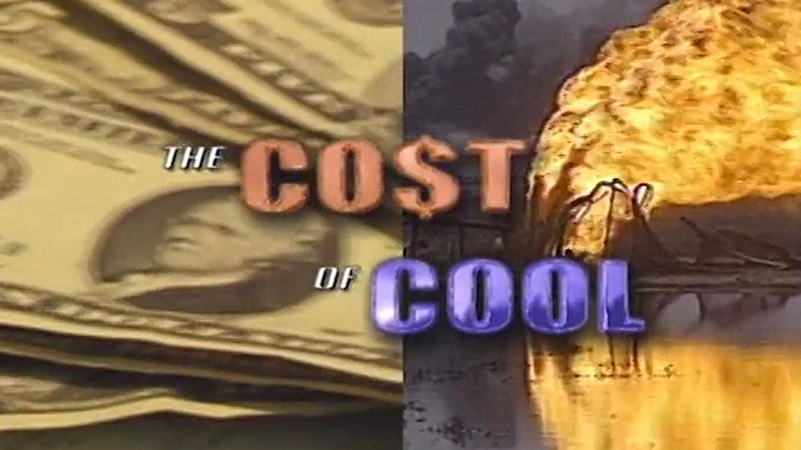 The Cost of Cool: Youth Consumption and the Environment